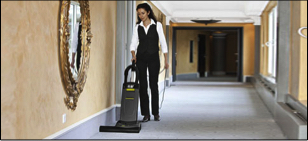 dry upright vacuum cleaners